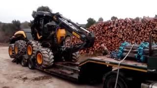 Dla facetów! Nieziemskie, nowoczesne maszyny przy pracy w lesie (wycinka drzew)