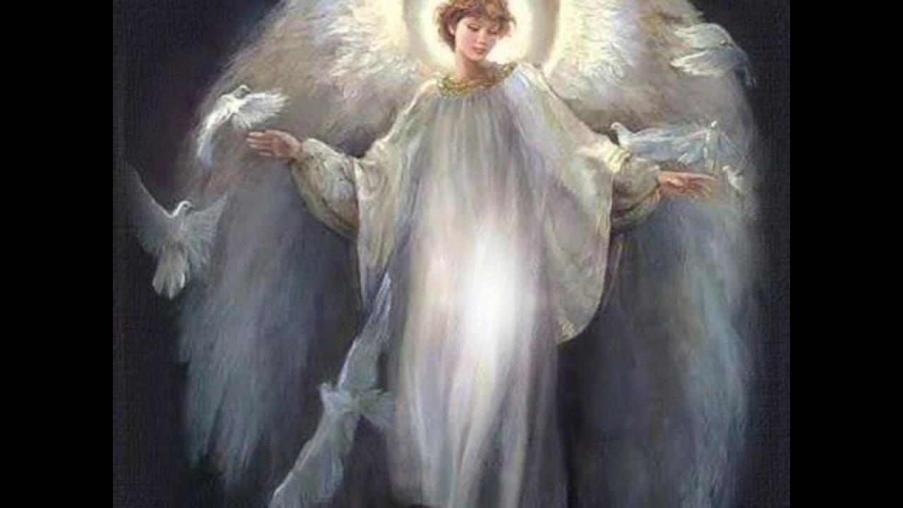 дом, фото ангела хранителя игоря сейчас выглядит самка