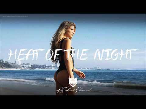 Jayceeoh & Sasha Grey - Heat Of The Night ft. Bella