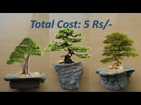 DIY-Art Attack | Instant Cement Mini Bonsai Pot.