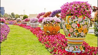 Top 10 Most Beautiful Flower Fields in the World