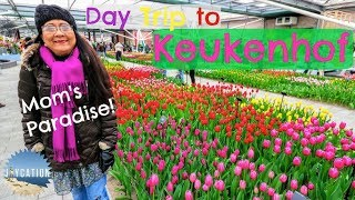 DAY TRIP TO KEUKENHOF from AMSTERDAM   NETHERLANDS TRAVEL VLOG