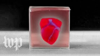 researchers-create-3-printed-heart-patient-cells