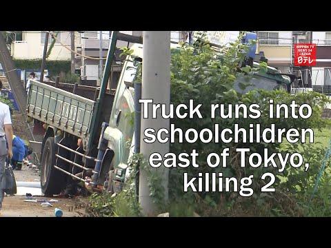 Truck runs into schoolchildren east of Tokyo, killing 2