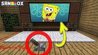 김뚜띠|마인크래프트에서 만들 수 있는 *5가지의 신기한 것들!*|마인크래프트|Minecraft