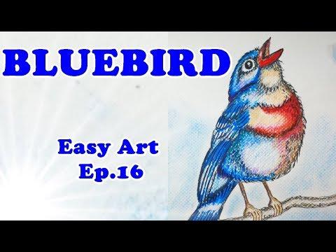 easy-art-ep.16-:-bluebird---how-to-draw-a-bird