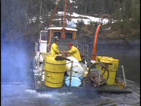 Exxon Valdez  - Oil Spill - Alaska - Stock Footage - Best Shot