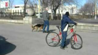 "Объездка ""молодого мустанга"" (часть 1)"