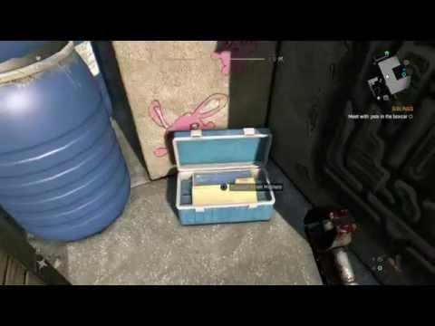 Hook up amplifier dying light