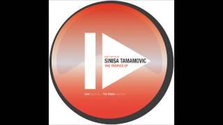 Sinisa Tamamovic - The Tropics - Night Light Records