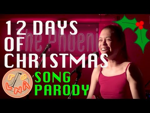 12 Days Of Christmas (Song Parody)