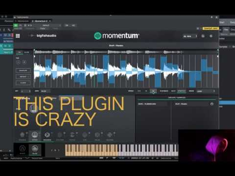 Momentum Big Fish Audio Does It Give SP404 Vibes ? | Playing With This Free Plugin Is Fun