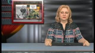 Военные рассказы Андрея Платонова. Часть первая