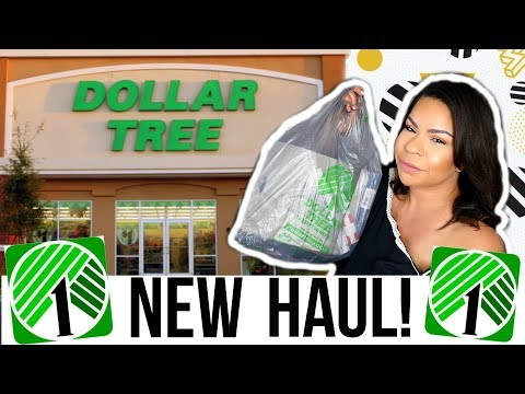 DOLLAR TREE HAUL 2018 | NEW DOLLAR STORE FINDS! | Sensational Finds