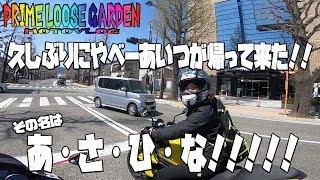 久しぶりにやべー奴登場!!!!/motovlog#105