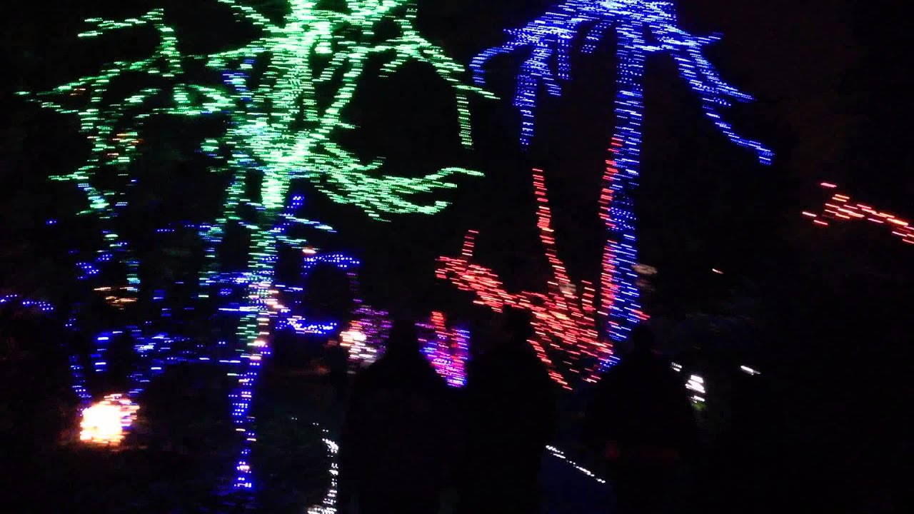 christmas lights at the grotto in portland oregon