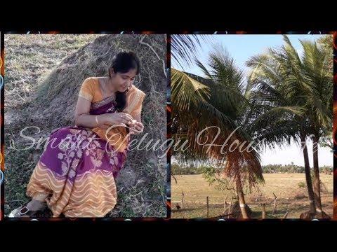 Spending Time in My Village Visit Vlog in Telugu By Smart Telugu Housewife||Village enjoyment