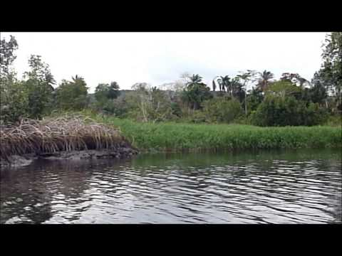 Boating Through Mangroves National Park, DR Congo, Part 2