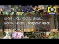 Nadina Nadi Chandana Full Song| DD Chandana Theme Song | ನಾಡಿನ ನಾಡಿ ಸ್ಪಂದನ ಚಂದನ ಪೂರ್ತಿ ಹಾಡು