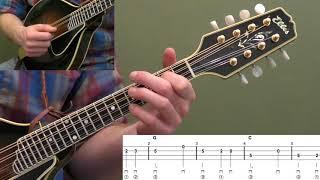 Bury Me Beneath The Willow Beginner Mandolin Lesson