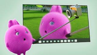 Sunny Bunnies | SUNNY BUNNIES - 큰 화면 | 어린이를위한 재미있는 만화 | WildBrain