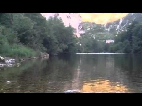 Castor des Gorges du Tarn