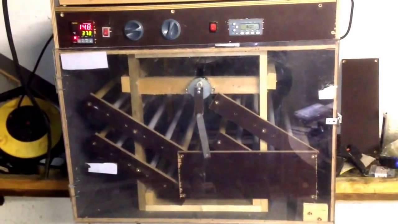 brutgerat brutmaschine brutschrank eigenbau die erste. Black Bedroom Furniture Sets. Home Design Ideas