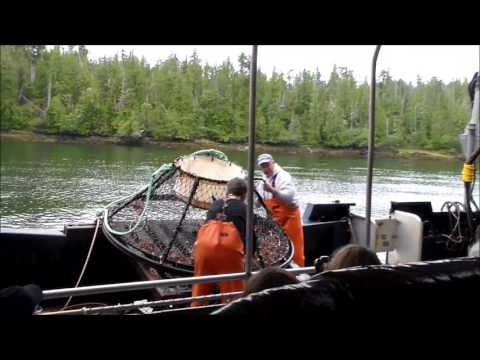 Bering Sea Crab Fishermen's Tour- Ketchikan, Alaska (Camera One)