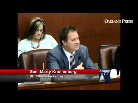 """State Sen. Marty Knollenberg (R-Troy) says you can't """"fix"""" being black. (c/o Senate TV)"""