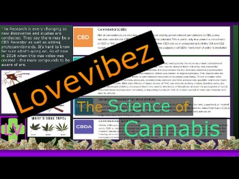 The Science of Cannabis LV