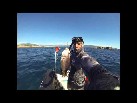 Chasse sous marine corse