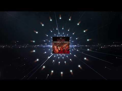 "Chris Hein - Ensemble Strings ""Details"""