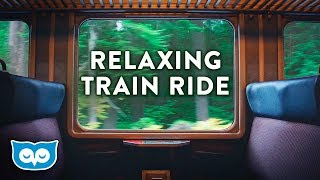 Train Ride Ambience:  ambient white noise for sleeping, focus, studying, reading screenshot 1