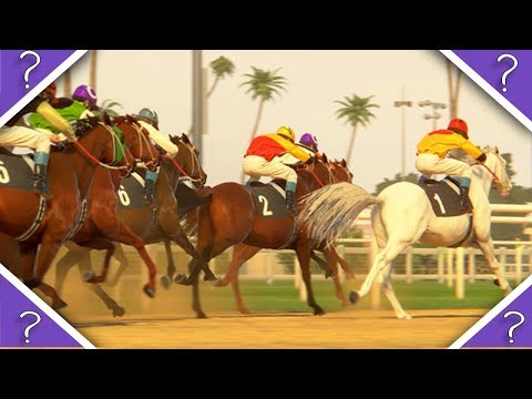 NEw Horse Racing Game 2019
