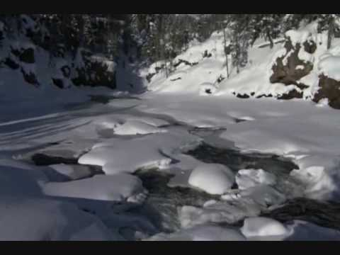 Yellowstone National Park - Ep.1, Winter (part 3)