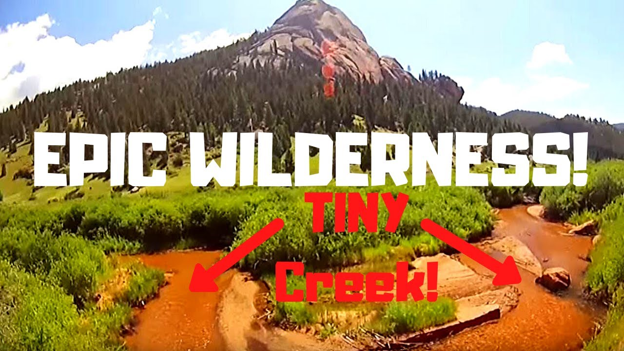 Fly fishing colorado a really small creek july 2015 for Small creek fishing
