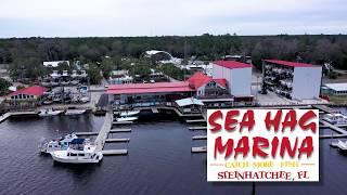 Sea Hag Marina - Steinhatchee Florida Fishing Marina Resort