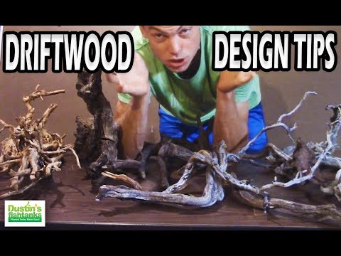how to add driftwood to aquarium
