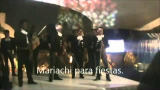 SERENATA HUASTECA. Mariachis para fiestas. DF.