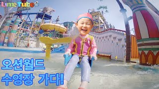 라임이의 워터슬라이드 도전!!! 신나는 오션월드 수영장 뽀로로 물놀이 ocean world swimming pool LimeTube & Toy 라임튜브