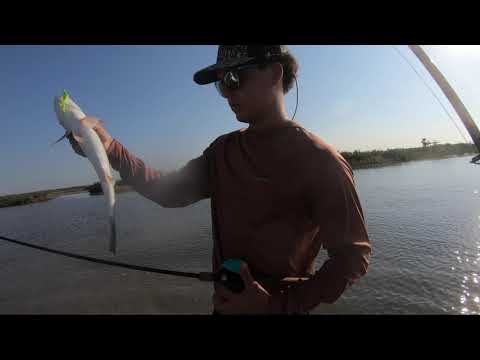 INSANE Saltwater Fishing Action In Nueces Bay!! Corpus Christi Fishing!