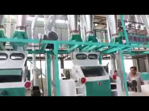 Two Become One Combined Small Flour Mill Plant