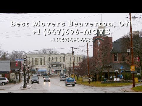 best-movers-beaverton-on,-canada-+1-(647)-696-move-+1-(647)-696-6683