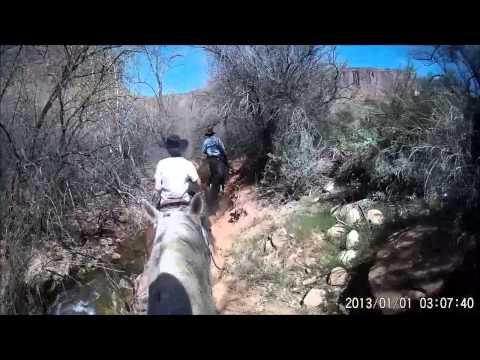 Horse Riding in Moab UTAH Pt 4 of 4