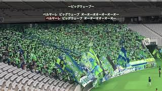 2018.3.18 vsFC東京@味スタ 緑と青の勇者達!