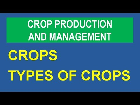crop rotation examples india