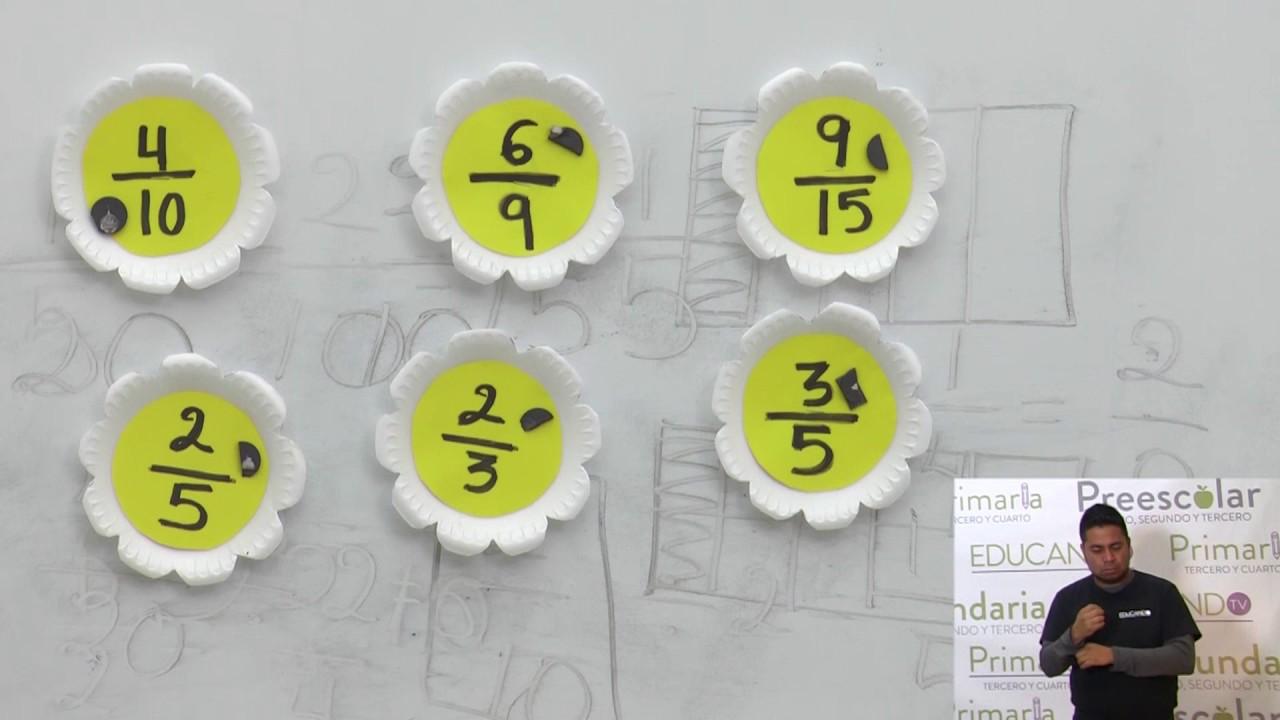 Primaria 3º Y 4º Clase 105 Tema Fracciones Equivalentes Youtube