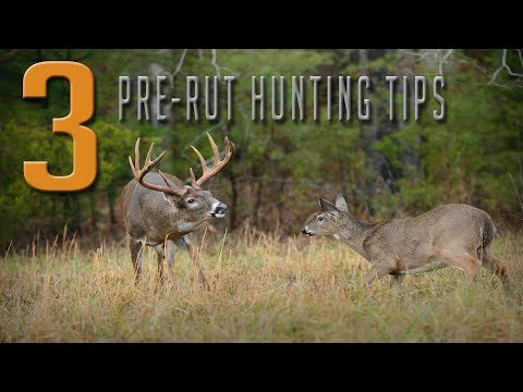 3 Tips For Hunting The Pre-Rut!