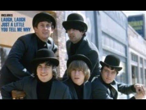 The BEAU BRUMMELS - Laugh, Laugh / Just A Little - stereo