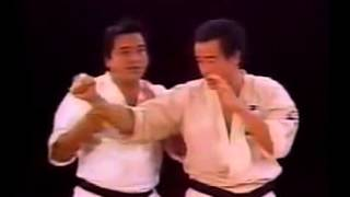 Ashihara Karate: Short Distance Fighting